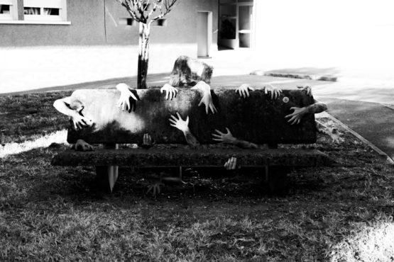 Photographie de banc entouré de différents bras
