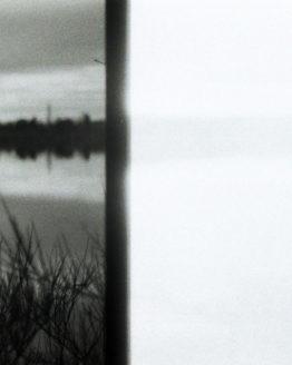 Photographie du lac de la ramée à toulouse derrière les hautes herbes